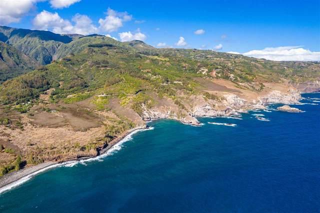 3040 Kahekili Hwy, Wailuku, HI 96793 (MLS #389050) :: Hawai'i Life