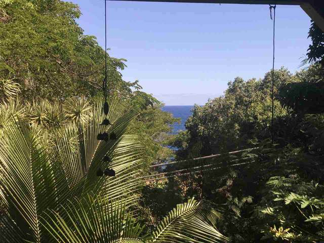 47990 Hana Hwy, Hana, HI 97613 (MLS #389135) :: Maui Estates Group