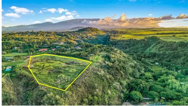 0 Papio Way, Haiku, HI 96708 (MLS #389410) :: Maui Estates Group