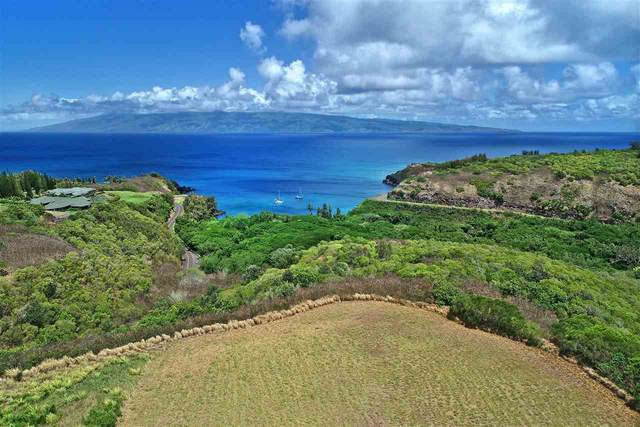 115 Keoawa Pl Lot #1, Lahaina, HI 96761 (MLS #389930) :: Speicher Group