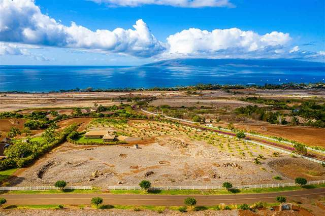 36 Wili Okai Way, Lahaina, HI 96761 (MLS #389968) :: Maui Lifestyle Real Estate | Corcoran Pacific Properties