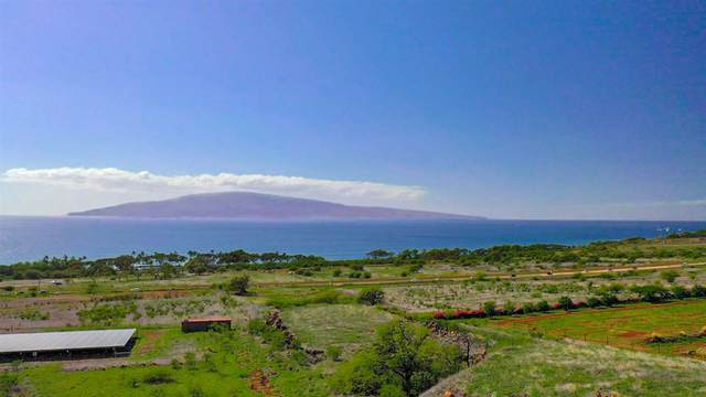 25 Haniu St Lot B, Lahaina, HI 96761 (MLS #390450) :: 'Ohana Real Estate Team