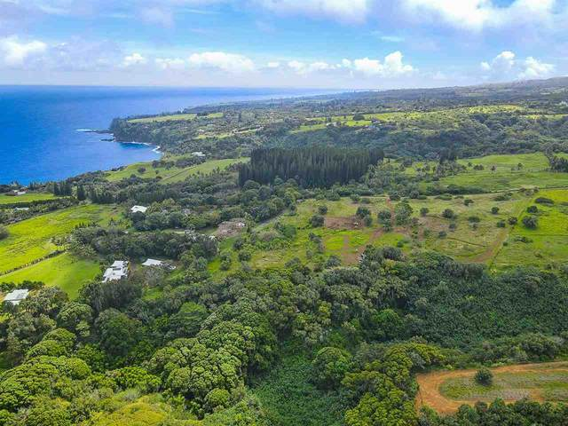 Manawai Pl Lot 3, Haiku, HI 96708 (MLS #391012) :: LUVA Real Estate