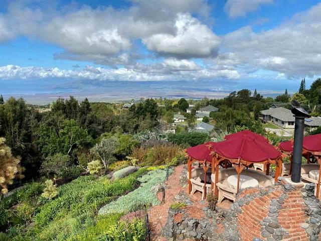 15200 Haleakala Hwy, Kula, HI 96790 (MLS #391022) :: Steven Moody