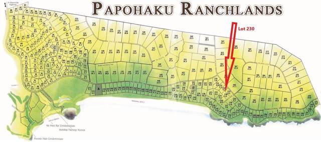 0 Kulawai Pl Lot 230, Maunaloa, HI 96770 (MLS #391104) :: EXP Realty
