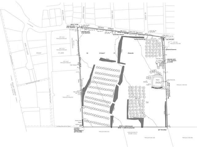 454 Ohukai Rd, Kihei, HI 96753 (MLS #391113) :: Coldwell Banker Island Properties