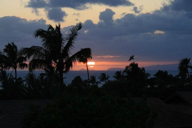 50 Kepuhi Pl #240, Maunaloa, HI 96770 (MLS #391238) :: Maui Lifestyle Real Estate | Corcoran Pacific Properties