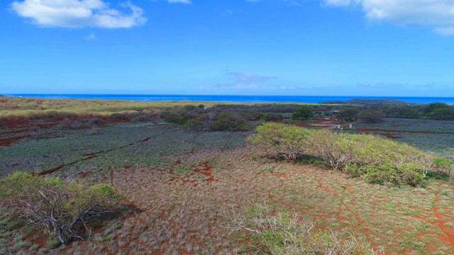 0 Hao Keehi Pl, Maunaloa, HI 96770 (MLS #391291) :: Corcoran Pacific Properties