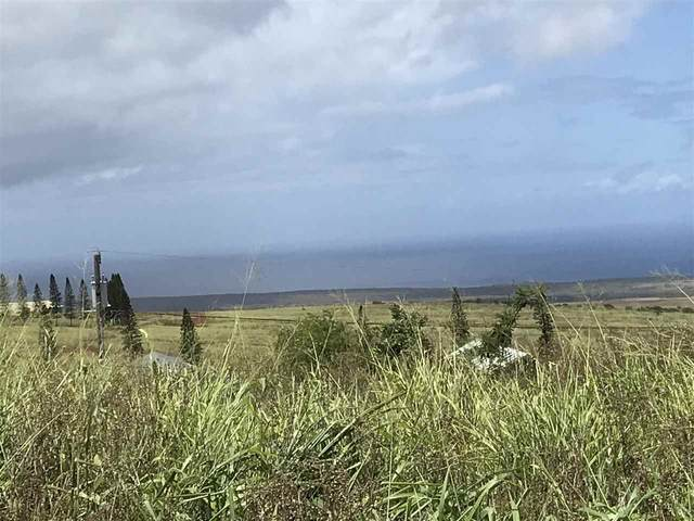 Maunaloa Rd Lot 629, Maunaloa, HI 96770 (MLS #391365) :: Hawaii Life Real Estate Brokers