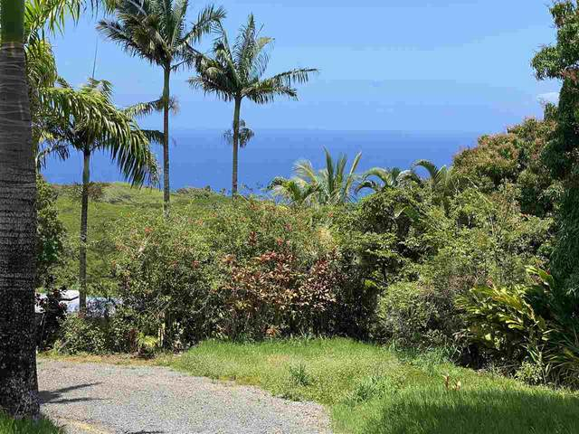 327 Hanauana Rd 327 Hanauana Rd, Haiku, HI 96708 (MLS #391391) :: Hawaii Life Real Estate Brokers