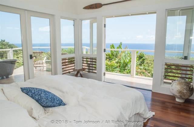 1675 Hana Hwy, Hana, HI 96713 (MLS #391647) :: Corcoran Pacific Properties