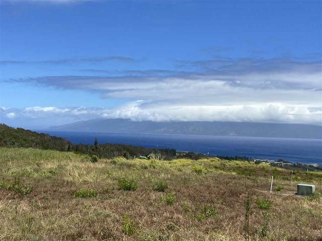 810 Mahana Ridge Pl Lot 48, Lahaina, HI 96761 (MLS #392010) :: LUVA Real Estate