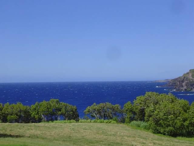 39698 Hana Hwy, Hana, HI 96713 (MLS #392235) :: Corcoran Pacific Properties