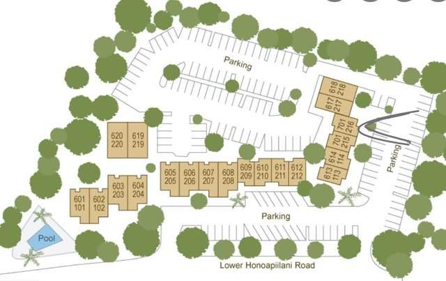 4310 Lower Honoapiilani Rd #216, Lahaina, HI 96761 (MLS #392511) :: LUVA Real Estate