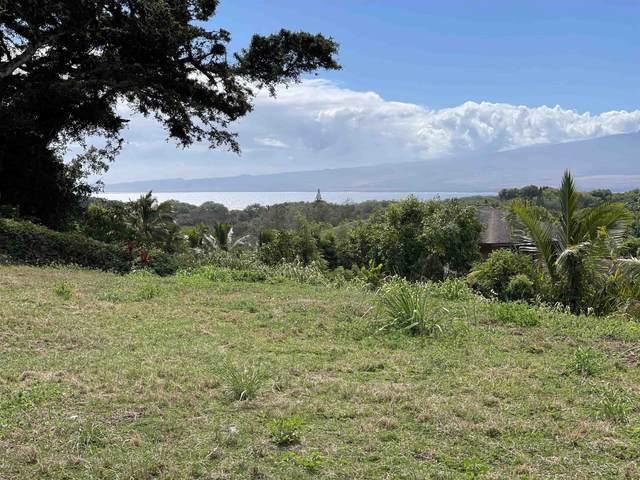 182 River Rd, Wailuku, HI 96793 (MLS #393089) :: LUVA Real Estate
