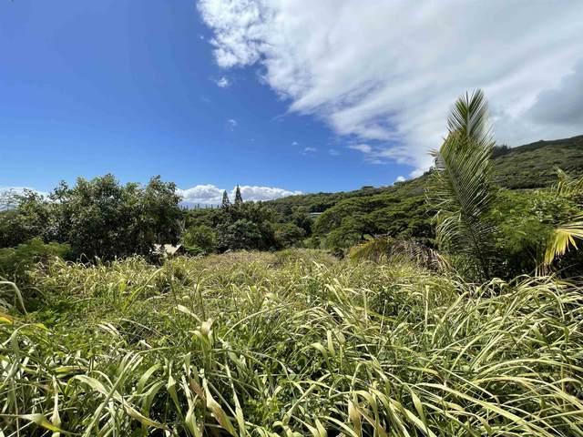 178 River Rd, Wailuku, HI 96793 (MLS #393090) :: Compass