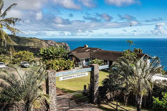 3530 Kahekili Hwy, Wailuku, HI 96793 (MLS #393268) :: Corcoran Pacific Properties