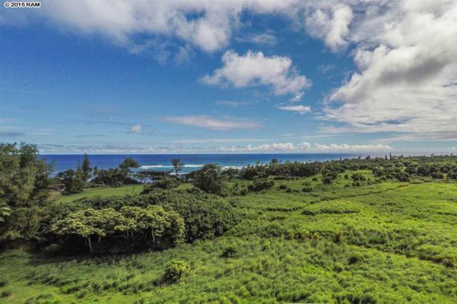 Hana Hwy, Hana, HI 96713 (MLS #367282) :: Elite Pacific Properties LLC