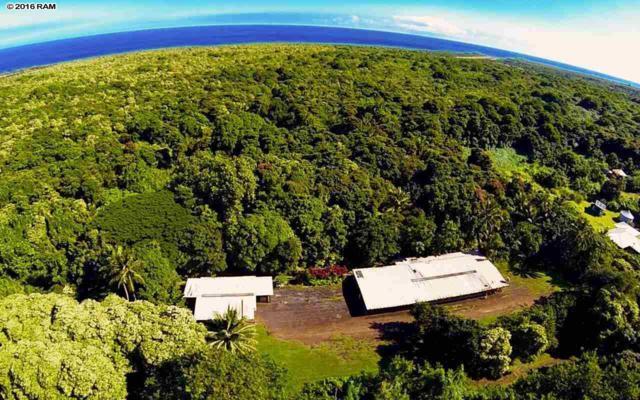 470 Ulaino Rd, Hana, HI 96713 (MLS #367953) :: Coldwell Banker Island Properties