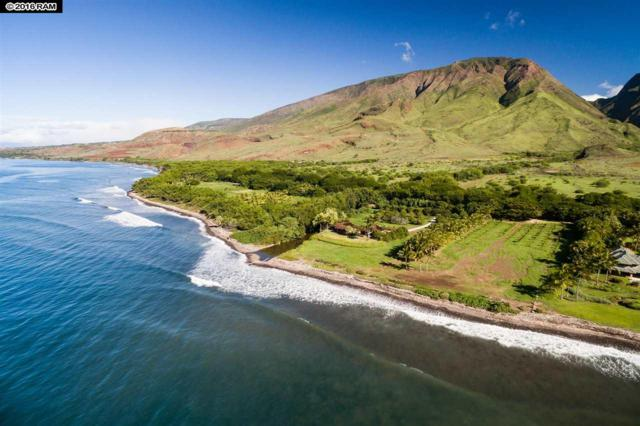 69 Kuahulu Pl, Lahaina, HI 96761 (MLS #372291) :: Maui Estates Group