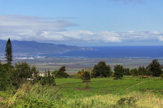 538 Naele Rd, Kula, HI 96790 (MLS #372316) :: Elite Pacific Properties LLC