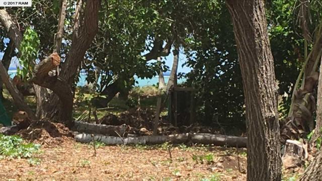 0 Kamehameha V Hwy, Kaunakakai, HI 96748 (MLS #374249) :: Island Sotheby's International Realty