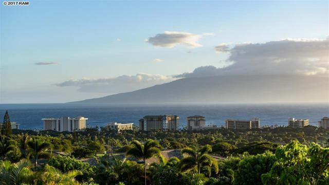 77 W Mahi Pua Pl #18, Lahaina, HI 96761 (MLS #374737) :: Elite Pacific Properties LLC