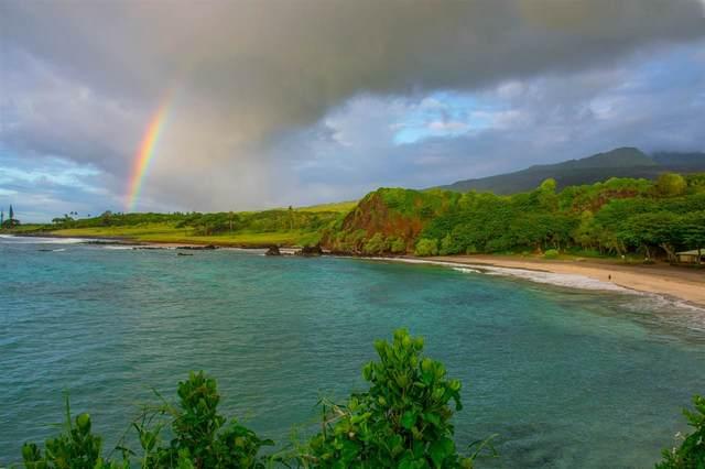 0 Hana Hwy Hamoa Bluffs Pa, Hana, HI 96713 (MLS #375381) :: Corcoran Pacific Properties