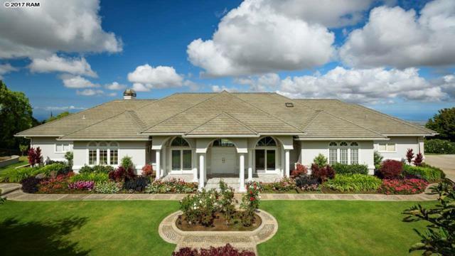 3610 Lower Kula Rd, Kula, HI 96790 (MLS #375643) :: Elite Pacific Properties LLC