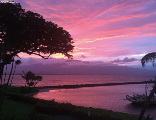 20 Hauoli St #309, Wailuku, HI 96793 (MLS #376423) :: Island Sotheby's International Realty