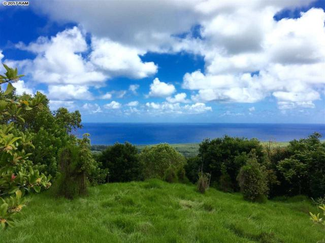 1772 Hana Hwy, Hana, HI 96713 (MLS #376492) :: Elite Pacific Properties LLC