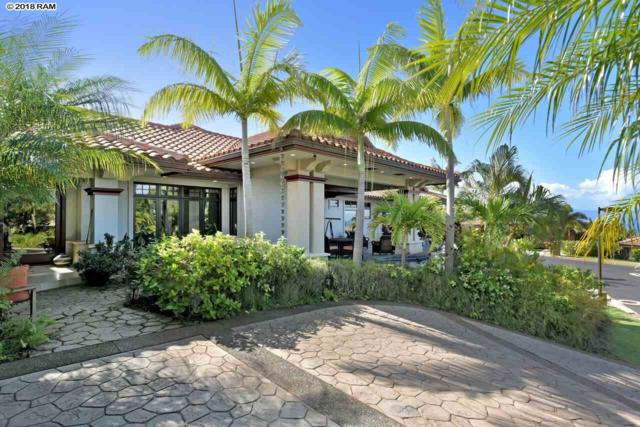 211 Welau Way, Lahaina, HI 96761 (MLS #376913) :: Elite Pacific Properties LLC