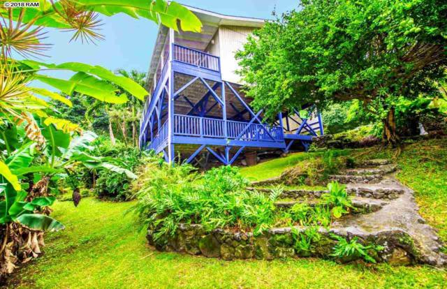 46990 Hana Hwy, Hana, HI 96713 (MLS #376929) :: Elite Pacific Properties LLC
