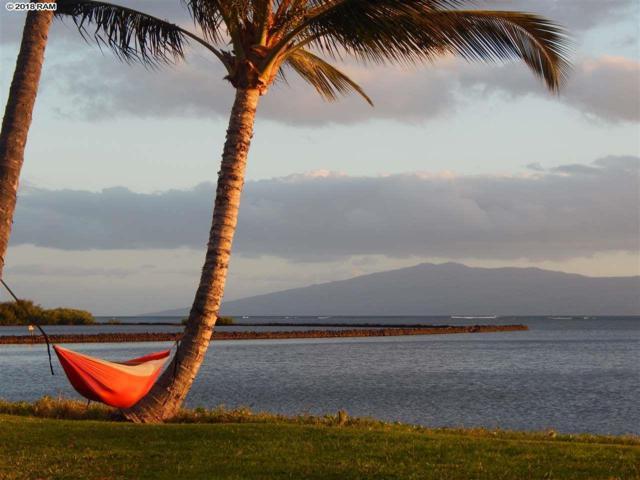 1000 Kamehameha V Hwy #114, Kaunakakai, HI 96748 (MLS #376999) :: Elite Pacific Properties LLC