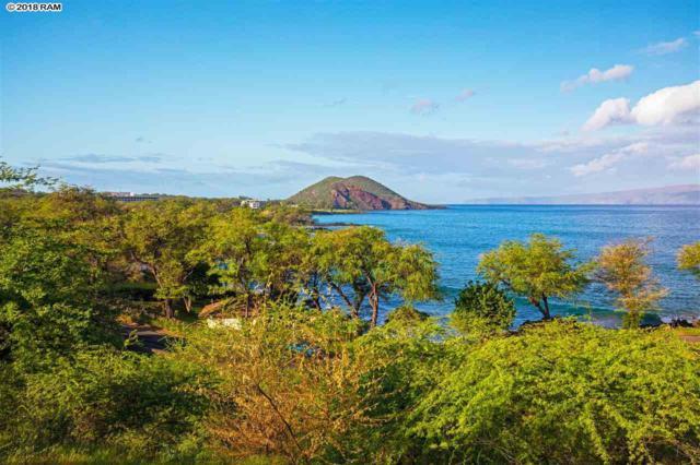 47000 Hana Hwy Oceanfront, Hana, HI 96713 (MLS #377040) :: Elite Pacific Properties LLC