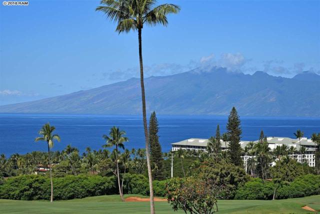 50 Puu Anoano St #803, Lahaina, HI 96761 (MLS #377515) :: Elite Pacific Properties LLC