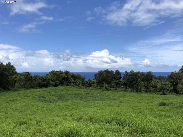 5452 Hana Hwy, Hana, HI 96713 (MLS #378458) :: Elite Pacific Properties LLC