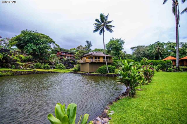 134 Waikoloa Rd, Hana, HI 96713 (MLS #378590) :: Elite Pacific Properties LLC