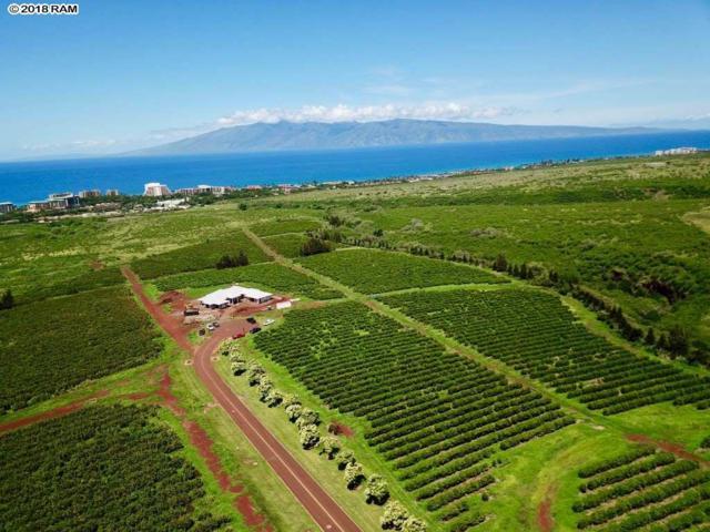 3400 Aina Mahiai Pl #11, Lahaina, HI 96761 (MLS #378689) :: Maui Estates Group