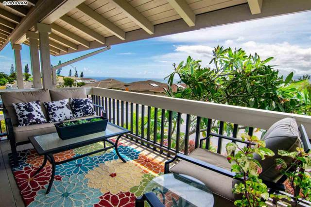 712 S Alu Rd, Wailuku, HI 96793 (MLS #379222) :: Elite Pacific Properties LLC