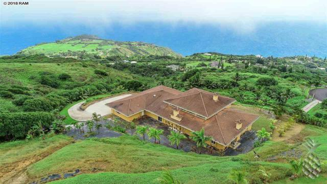 54 Hulumanu Pl, Wailuku, HI 96793 (MLS #379822) :: Elite Pacific Properties LLC