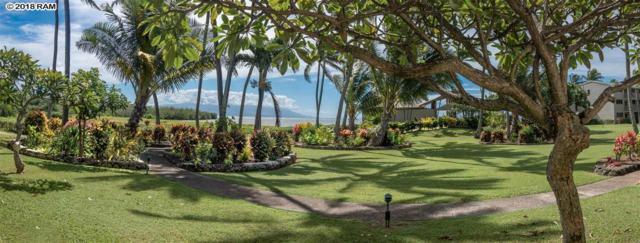 7146 Kamehameha V Hwy Wcc107, Kaunakakai, HI 96748 (MLS #380019) :: Elite Pacific Properties LLC