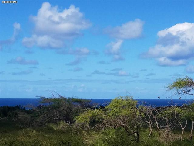 240 Kaluakoi Rd #240, Maunaloa, HI 96770 (MLS #380559) :: Maui Estates Group