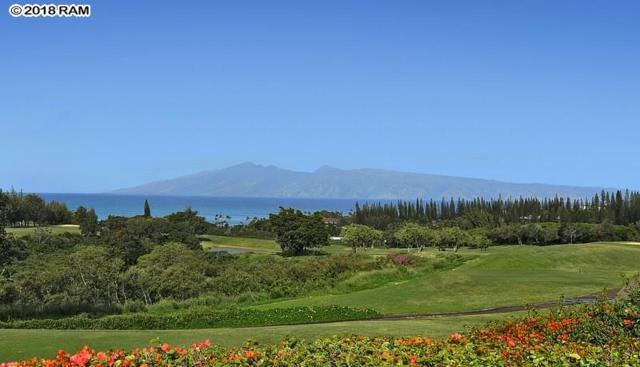 1214 Summer Rd #44, Lahaina, HI 96761 (MLS #380844) :: Maui Estates Group