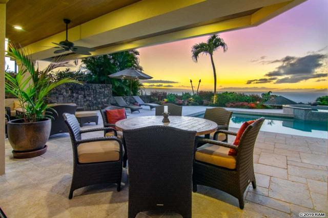 614 Silversword Dr, Lahaina, HI 96761 (MLS #380877) :: Elite Pacific Properties LLC