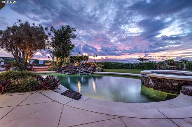 218 Crestview Rd #10, Lahaina, HI 96761 (MLS #380926) :: Maui Estates Group