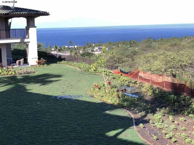 71 Wailea Gateway Pl #204, Kihei, HI 96753 (MLS #380987) :: Elite Pacific Properties LLC