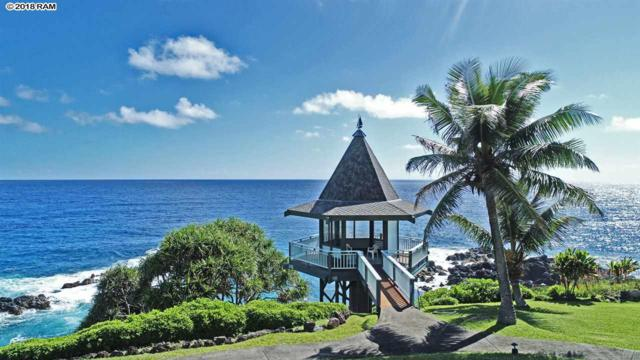 47680 Hana Hwy, Hana, HI 96713 (MLS #380993) :: Elite Pacific Properties LLC