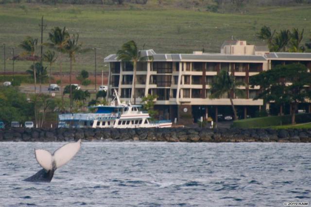 20 Hauoli St #202, Wailuku, HI 96793 (MLS #381636) :: Maui Estates Group