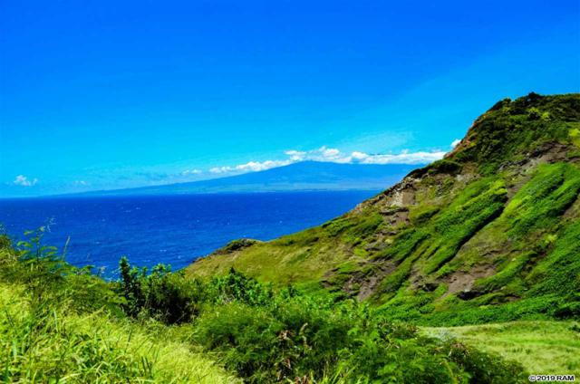 4970 Kahekili Hwy, Wailuku, HI 96793 (MLS #382124) :: Elite Pacific Properties LLC